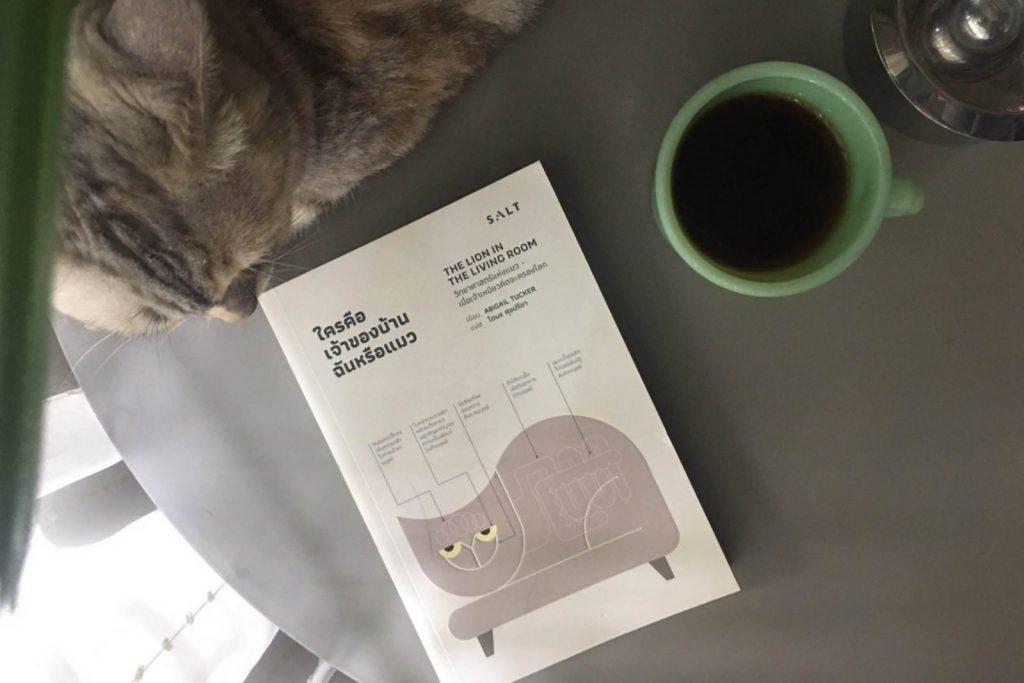 ใครคือเจ้าของบ้าน ฉันหรือแมว