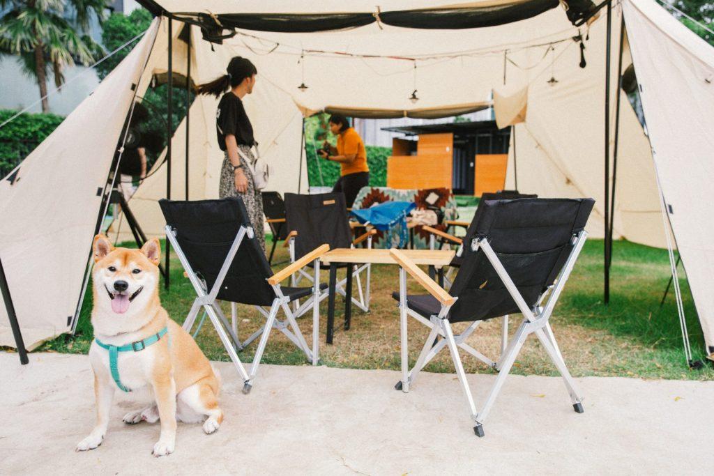 kamaboko coffee camp
