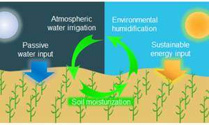 Researcher Designed a New Type of Soil that can Harvest Water from the Air and Distribute it to Plants