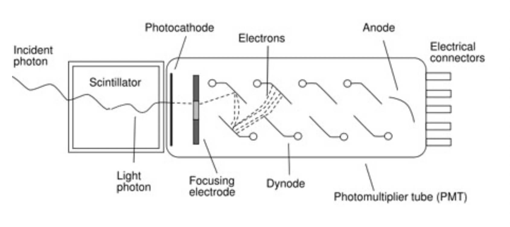 Schematic diagram of a scintillation detector comprising a scintillation material coupled to a photomultiplier tube.