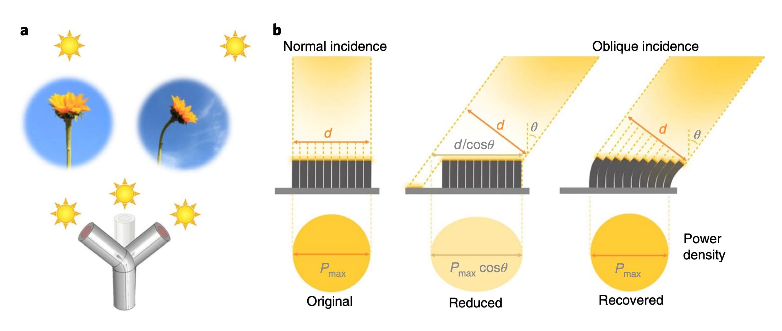 The concept of artificial phototropism and SunBOTs.