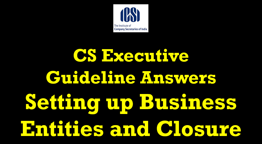 cs executive guideline answers setting up business entities & closure