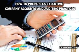 CS Executive Auditing Practices paper 5B by CA Raj K Agrawal
