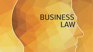 CA Intermediate   CA IPCC Part I Business Laws