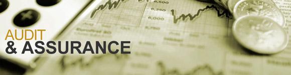 CA Intermediate | CA IPCC Paper 6 Auditing And Assurance CA Anuradha Agrawal