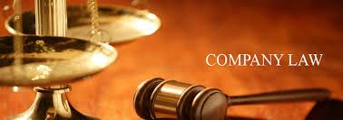 CS EXECUTIVE PAPER 1   COMPANY LAW BY Prof  Amit Karia