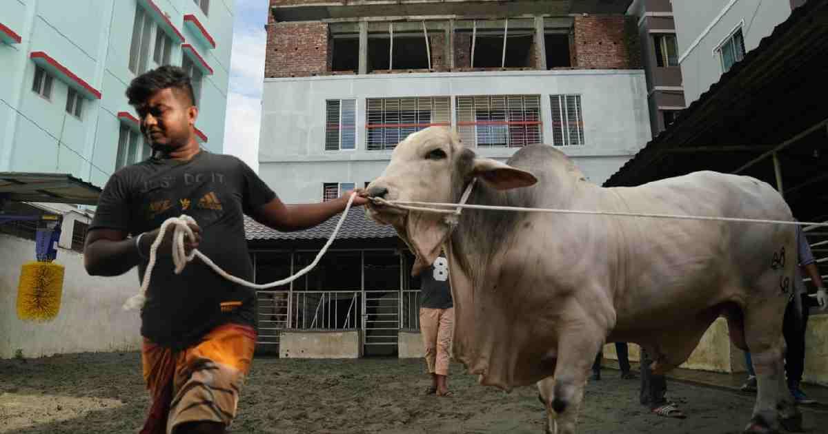 Experts fear spike in Corona infections after Eid-ul Azha