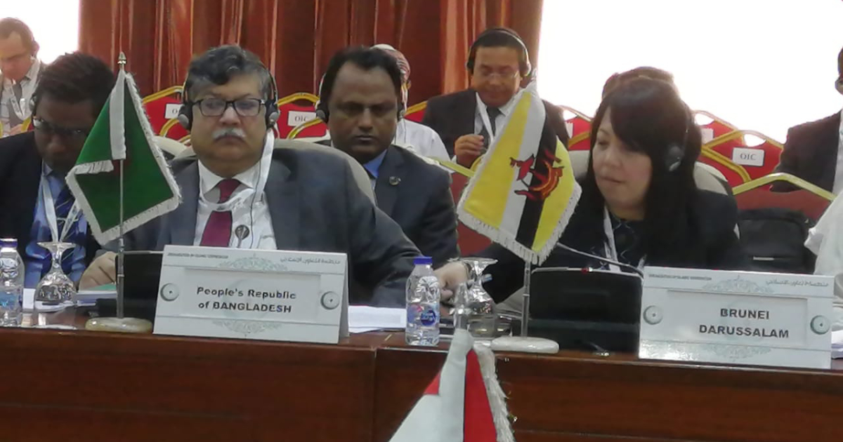 ICJ case against Myanmar: OIC to convene pledging conference