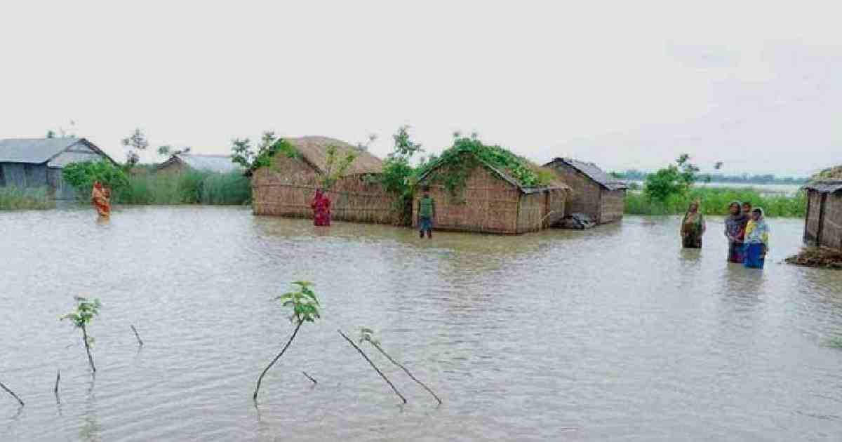Sunamganj Flood: Fisheries sector suffers a loss of 'TK 21.45 cr'