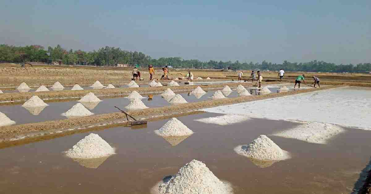 BSCIC to ensure salt supply to preserve sacrificial animal rawhide