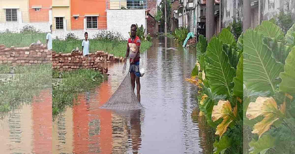 Waterlogging piles agony on Satkhira municipality residents