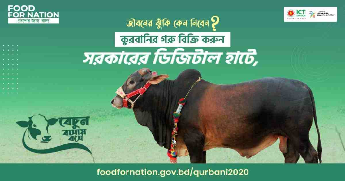 Eid ul Azha: Online cattle buying likely to reach new heights amid pandemic