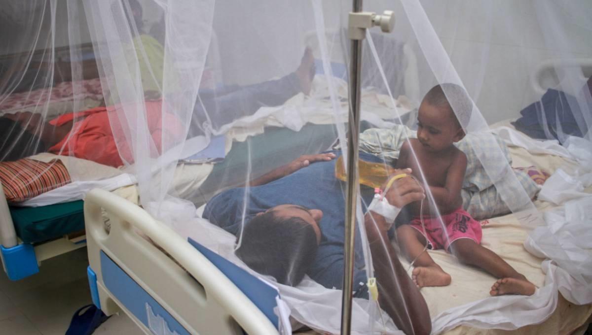 2 die of dengue; 750 new patients hospitalised in 24hr