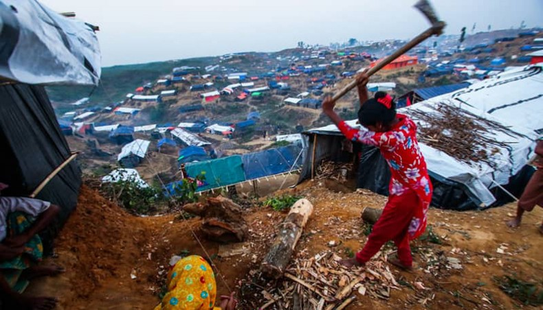 Rohingyas eating up much of Bangladesh forests: FM