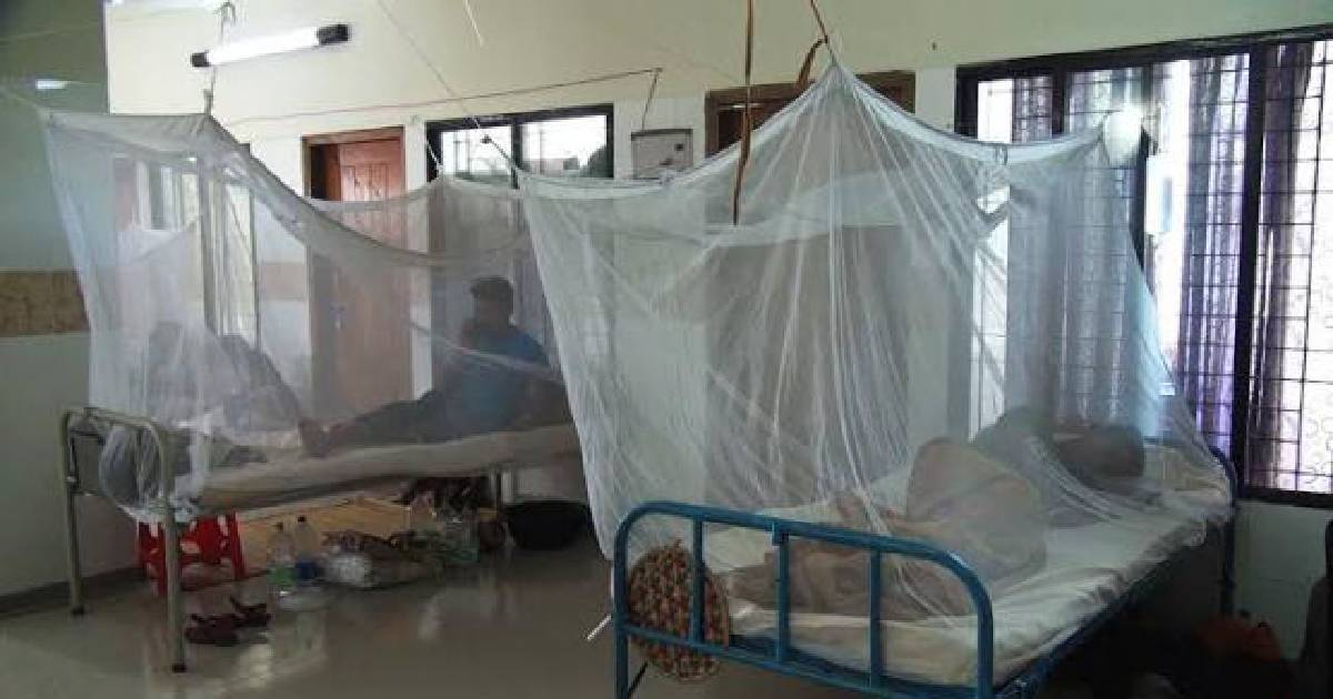 One new dengue patient admitted to hospital in 24 hrs