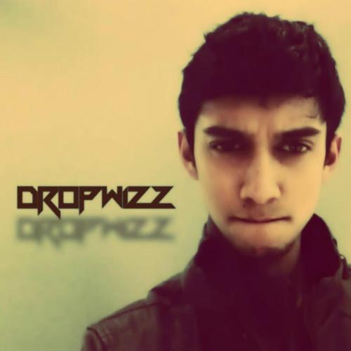 Dropwizz