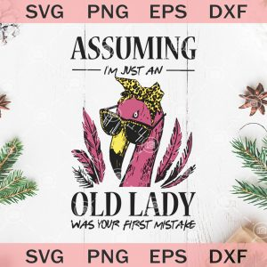 Assuming im just an old lady was your first mistake funny flamingo svg