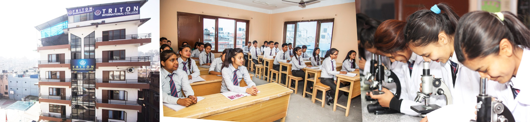 Admissions open for BCA, BA, BSW and BBS programs at Triton International College
