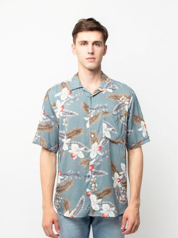 HAWAII-MIKU-TOSCA-1