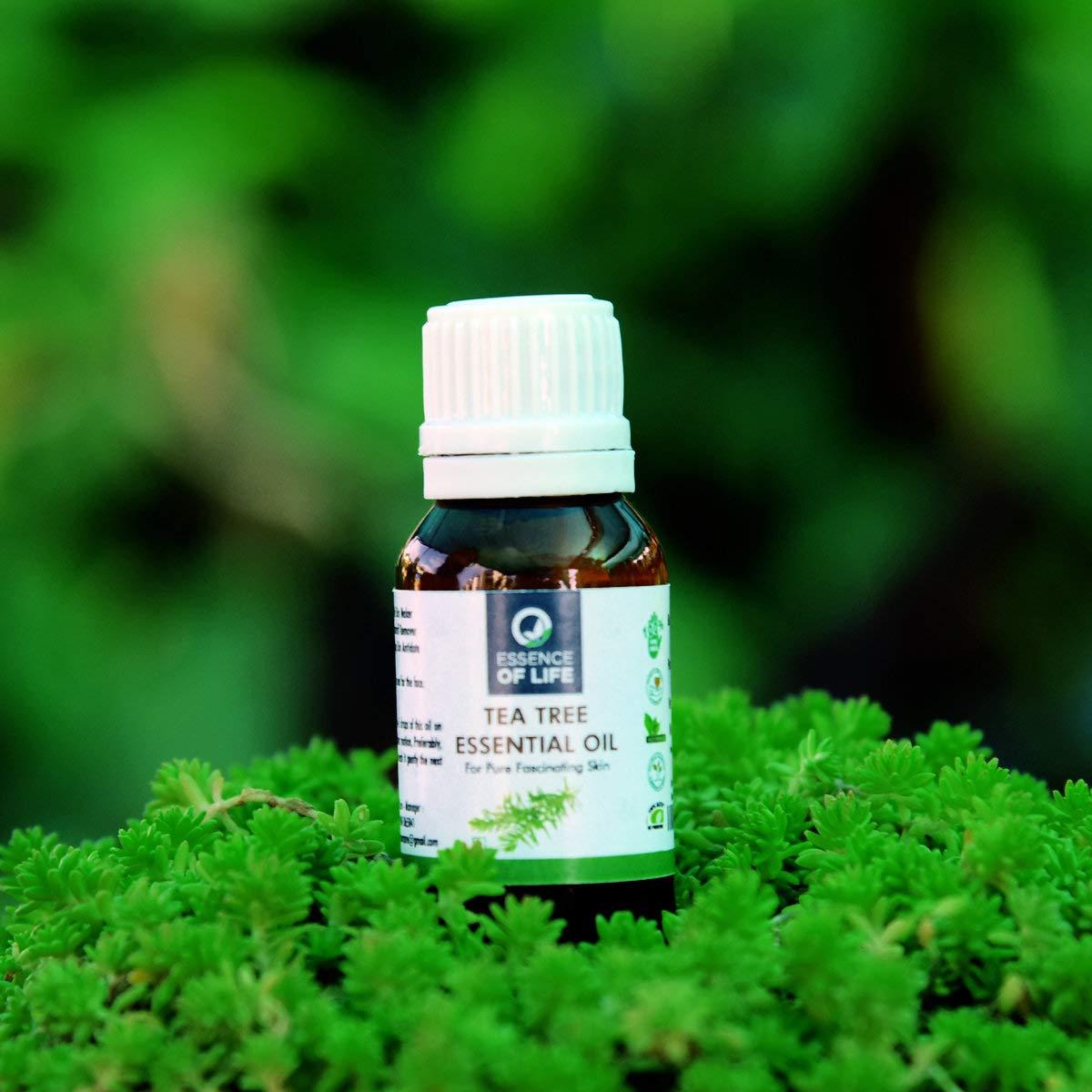 Tea Tree Essential Oil | Essence of Life