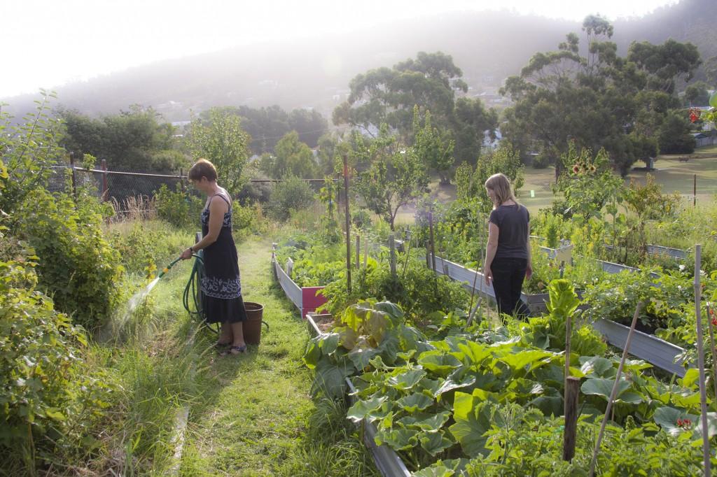 Taroona Neighbourhood Garden-Hobart