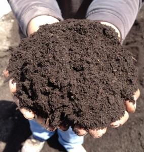 hands-of-compost