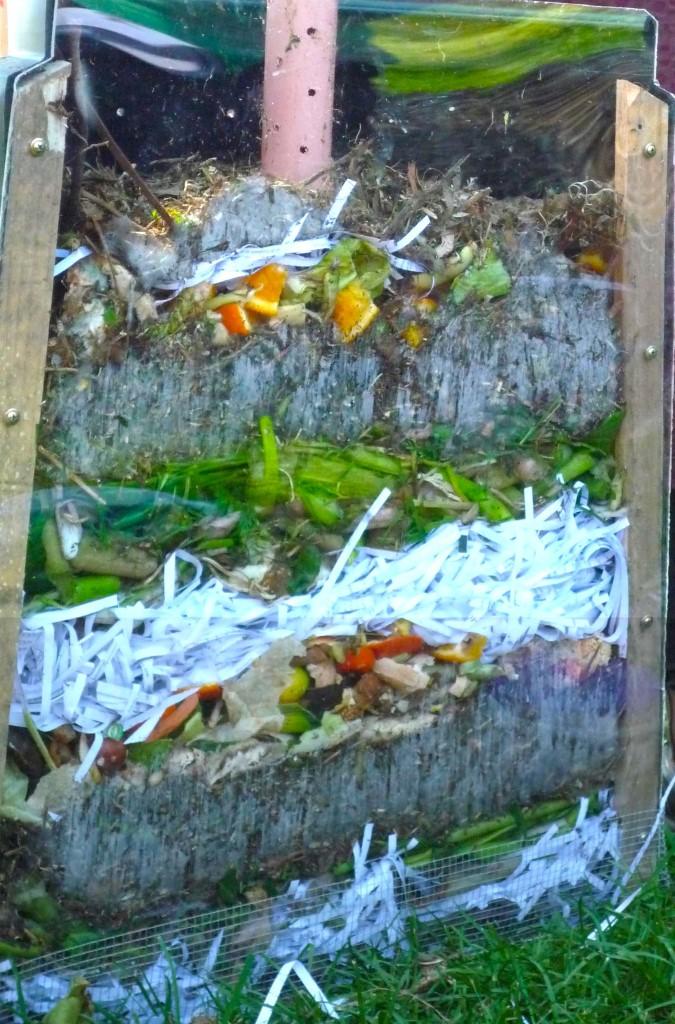 compost profile 1