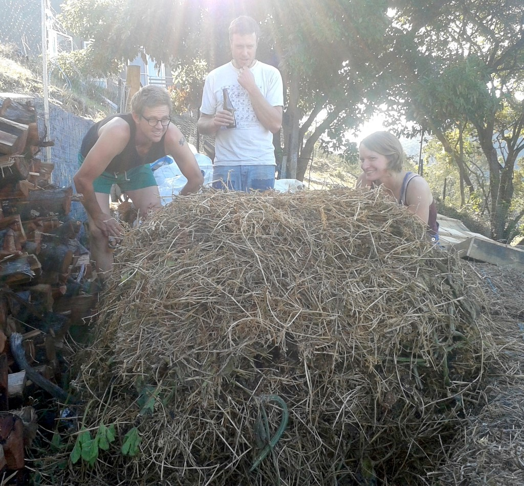 Compost appreciation