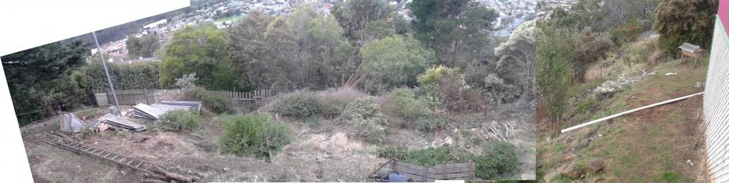 front garden panarama