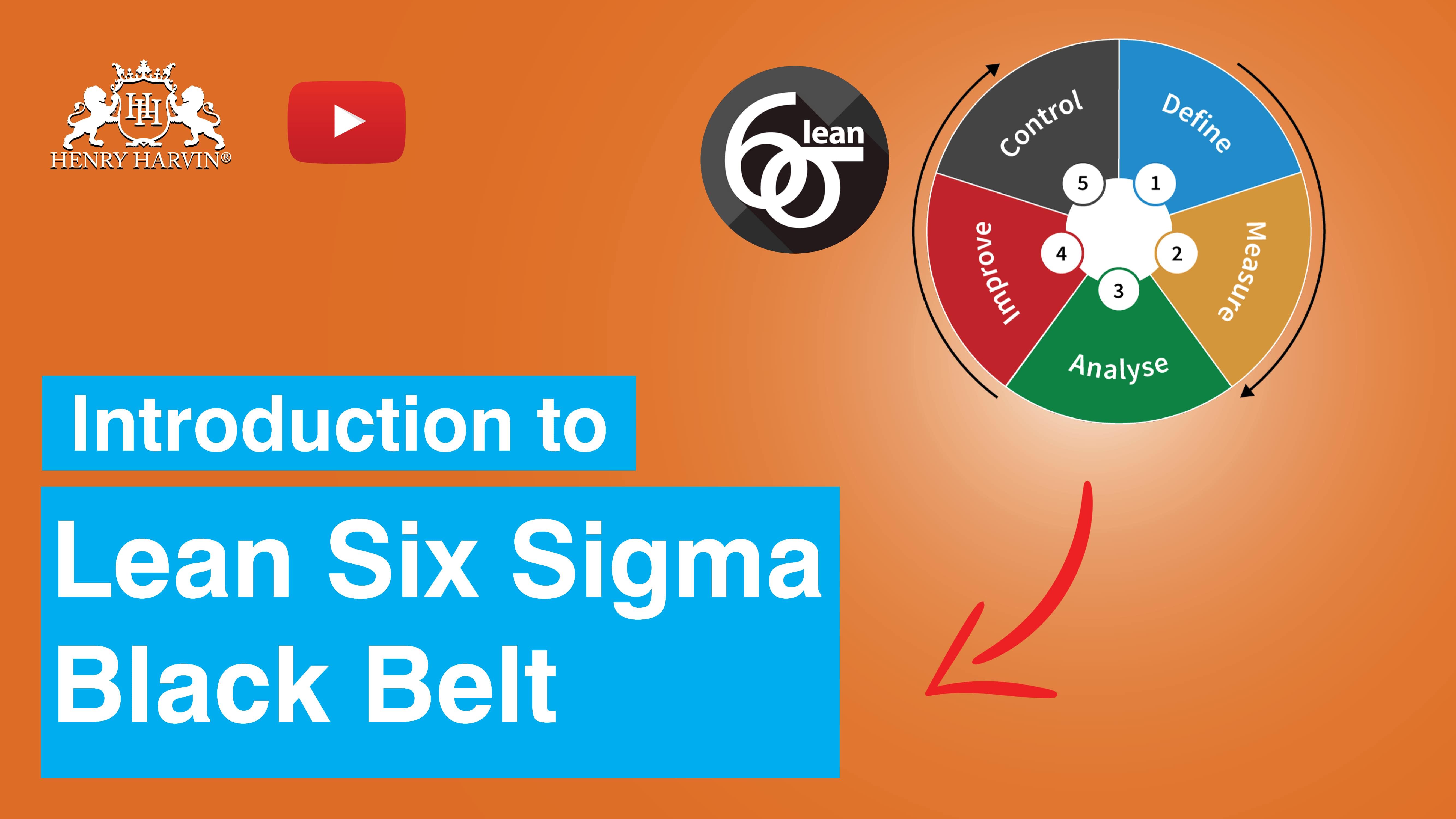 Six Sigma Master Black Belt  Lean Six Sigma Master Black Belt ...