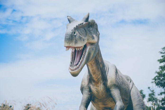 Ilmuwan rekonstruksi tengkorak dinosaurus dalam fosil telur