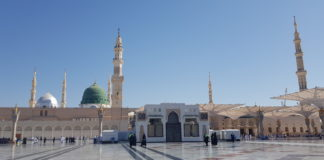 Prophet's Mosque to open gradually from end of May