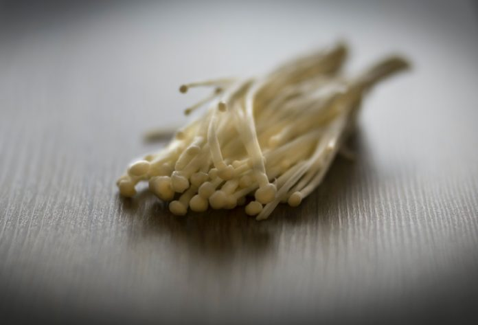 Jamur enoki terkontaminasi saat pengepakan dan penyimpanan