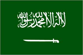 Partisipasi Saudi di Hari Solidaritas tegaskan dukungan untuk Palestina