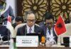Indonesia desak OKI bersatu untuk Palestina