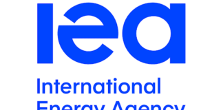 International Energy Agency launches World Energy Investment 2020 on Indonesia