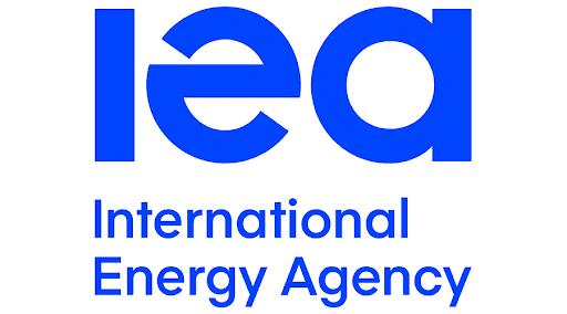 "Badan Energi Internasional luncurkan ""World Energy Investment"" 2020 khusus Indonesia"