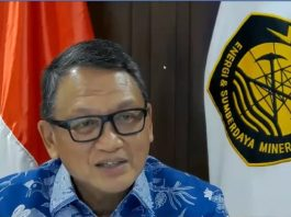 Indonesia highlights carbon emission mitigations of G20 countries