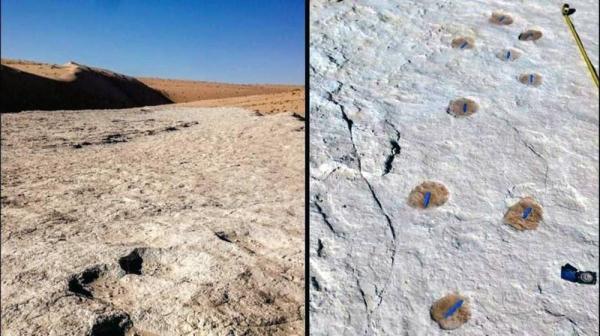 Saudi researchers discover 120,000-year-old human footprints