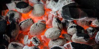 Indonesia applies biomass cofiring to increase national energy mix