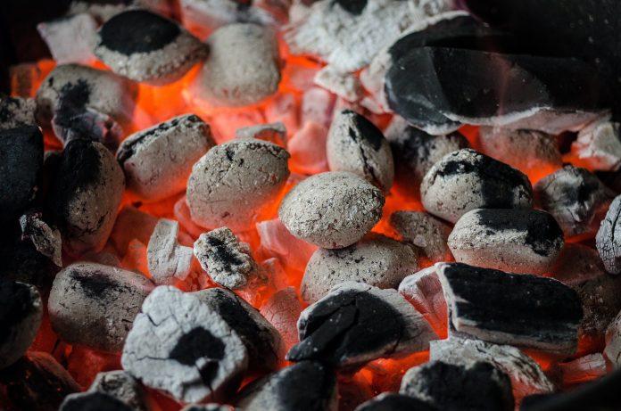Indonesia terapkan 'cofiring' biomassa tingkatkan bauran energi