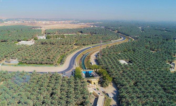 Al-Ahsa Arab Saudi oasis terbesar di dunia