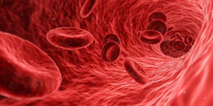 COVID-19 – Ahli: Kekebalan terhadap virus corona bertahan lama
