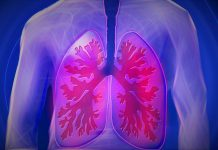 Tuberculosis in humans found 9,000 years ago