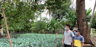 Taiwan agricultural mission makes Indonesia's Karawang productive land