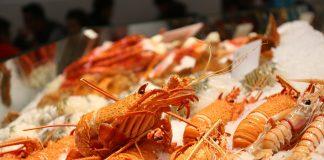 Indonesia akan jajaki kerja sama budidaya lobster dengan Vietnam