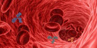 COVID-19 – Vaksin EpiVacCorona Rusia mengembangkan antibodi pada 94 persen lansia