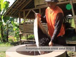 Indonesia targetkan 20.000 desa terlibat dalam Program Kampung Iklim