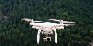 Arab Saudi akan tanam pohon di gurun dengan 'drone'