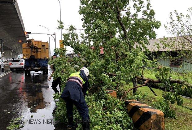 白鹿颱風宜縣路樹倒塌多處 波麗士第一時間清除!